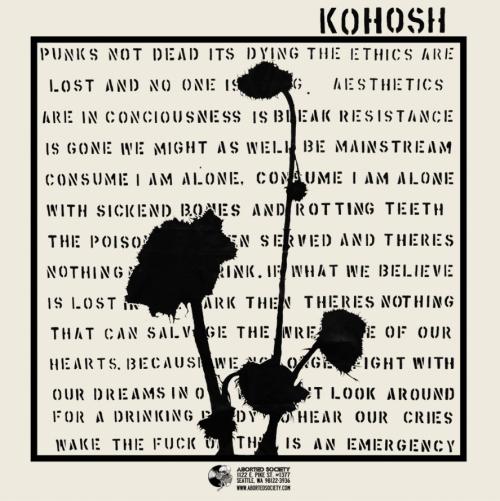 kohosh-adelitas-split